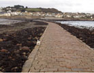 Dog friendly walk around Mounts Bay Cornwall